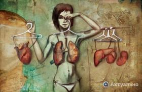 Картинки по запросу изятие органов